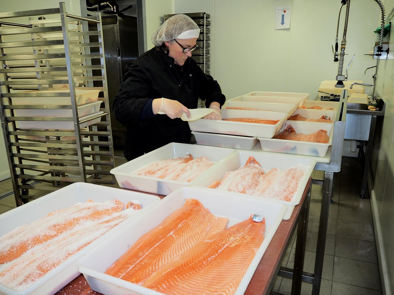 Saumon fumé artisanal et bio - restaurant traiteur poissonnerie - Rennes, Bretagne, Nantes - Savoir faire - Salage et rincage-1
